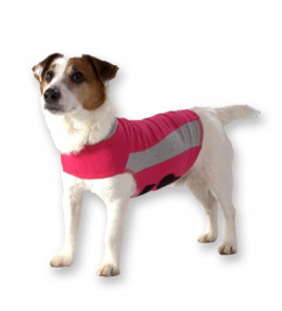 """The Thundershirt also comes in a blue or pink """"polo"""" style."""