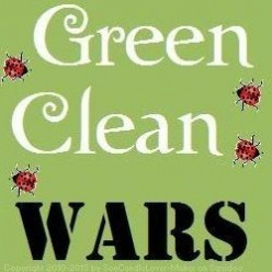 Green Cleaner Wars! All Purpose: Sun & Earth vs. Green Works