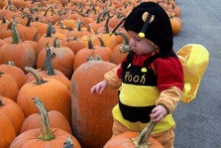 Halloween Fall Farm Events in Rochester, New York