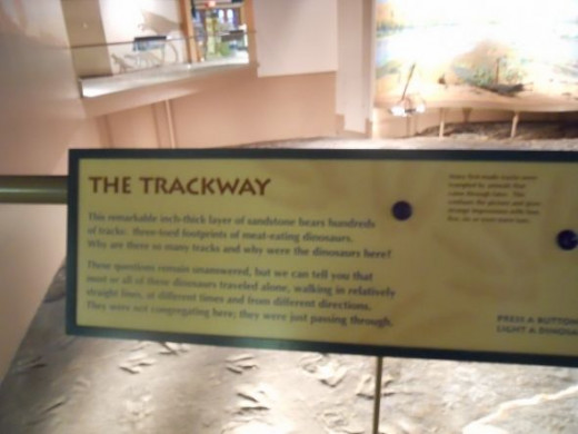 Information on the trackway