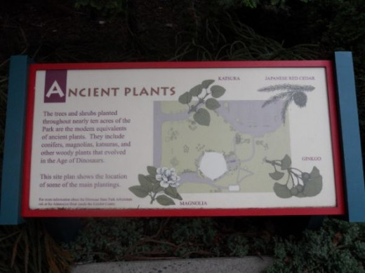 This sign explains that the plants in the arboretum are modern counterparts of ancient plants.