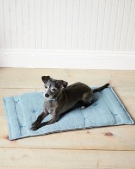 Dog Bed Travel Cushion