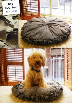 No Sew DIY Dog Bed Tutorial