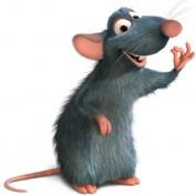 Renaissance Mouse profile image