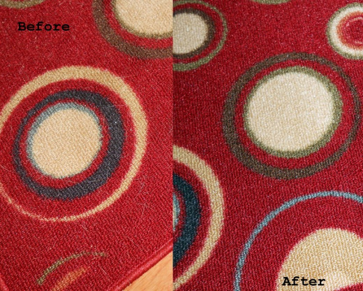 This vacuum does a great job on pet hair! Though it has no roller brushes for carpet it quickly cleaned this low pile kitchen rug. GREAT for pet hair!