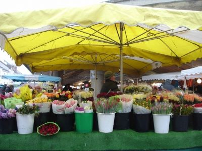 Fresh Flowers from Fontainebleau's Market
