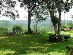 Beautiful landscaped garden at Wijeya Holiday resort