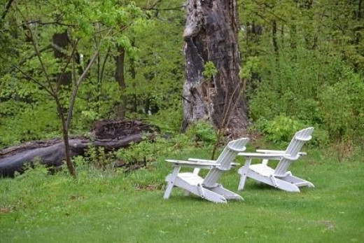 Two Adirondack chairs at edge of the lawn, looking out into the woods - A morgueFile Free Photo
