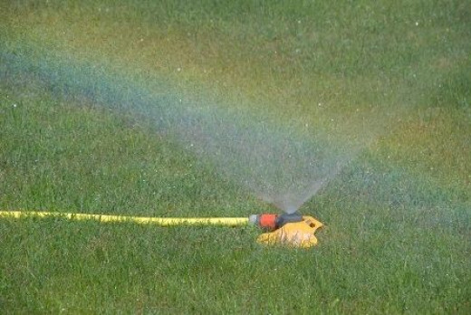 Lawn sprinkler running in hot sun - a morgueFile Free Photo