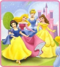 Beautiful Disney Princess Costumes for Women