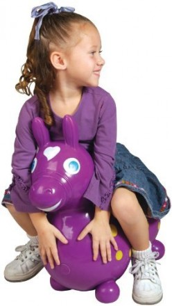 Gymnic Rody Hopping Horse: Worth the Investment?