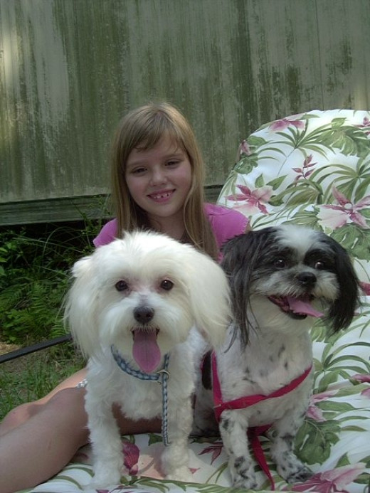 Freddie and Teddy relax with their friend for a quick photo.