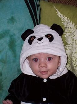 Puppy dog costumes for infants and babies