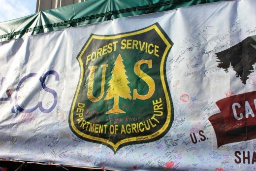 People are encouraged to sign the tarp as the tree stops along the way to Washington, DC.