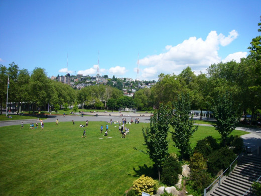 A large lawn near the fountain to play or relax