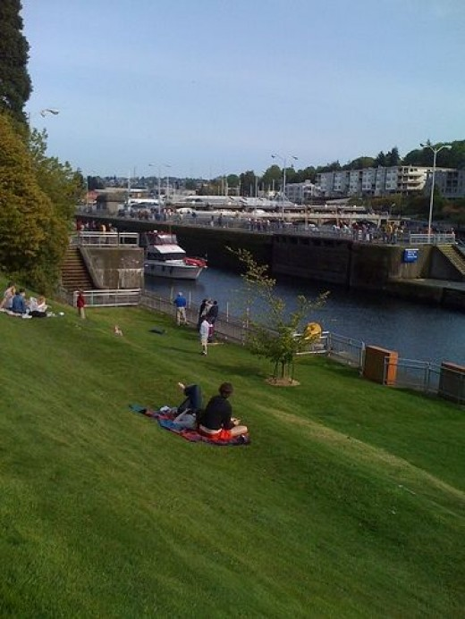 Picnic at the Ballard Locks Seattle