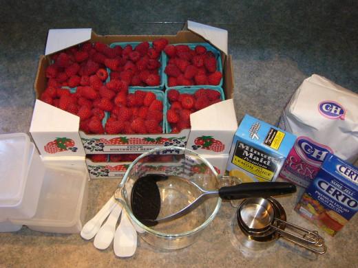 Raspberry Jam Essentials