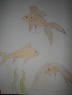 I Had Cannibal Fish