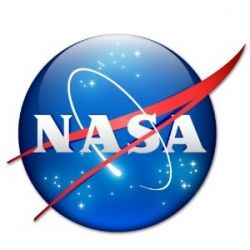 Nasa Meatball Logo