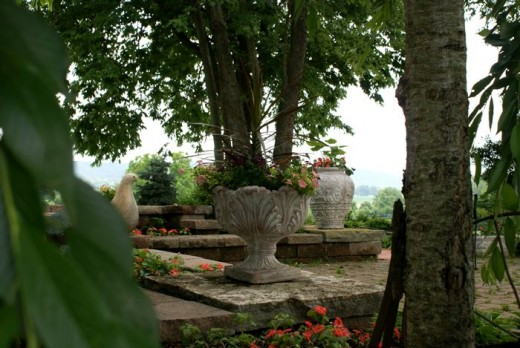 Beautiful Views Surround the Wine Country Gardens