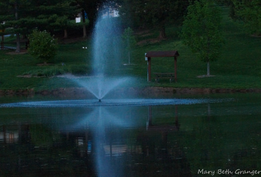 In this photo I tried using my flash.  It gives the fountain a bluish cast.