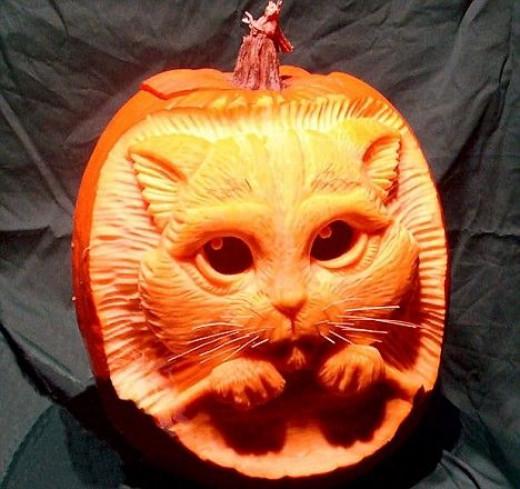 Pumpkin Cat by Ray Villatrane