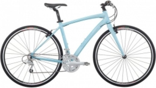 Raleigh Alysa FT2