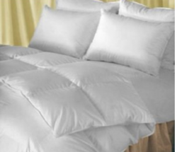 Goose Down Comforter
