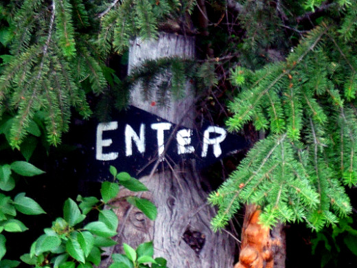 A Hand Painted Enter Sign Nestled In The Trees Copyright © 2013 C. Johnson, Home Of A Thousand Faces, Radium BC. All Rights Reserved