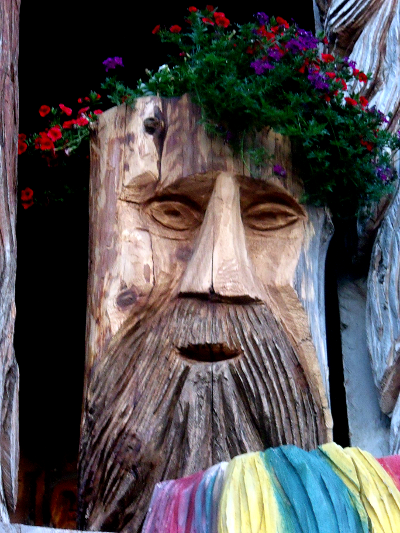 Chainsaw Tree Stump Carving Flower Planter Copyright © 2013 C. Johnson, Home Of A Thousand Faces, Radium BC. All Rights Reserved