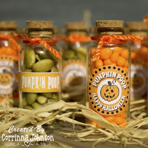 Pumpkin Poop in a Jar Craft and Printable Poem