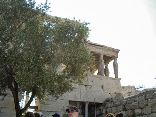 Another view of the Karyatids through Athena's olive tree.