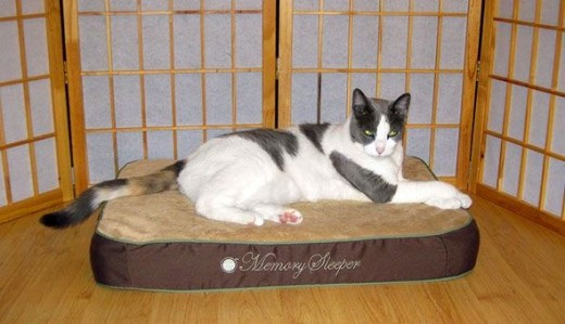 K&H Memory Foam Cat Bed