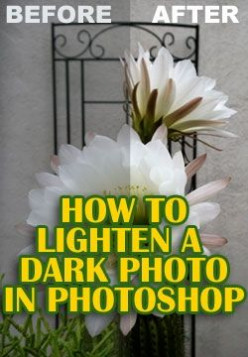 Photoshop Tutorial: How to Lighten a Dark Photo