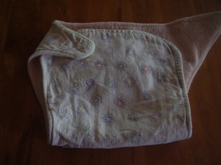 A homemade cloth diaper with a flannel exterior and fleece interior. This was used for several years and is still in good shape!