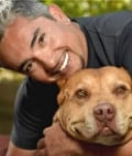 Cesar Millan the Greatest Dog Rehabilitator