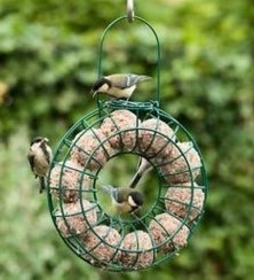 Hang your homemade fat balls in a fat ball feeder like this one