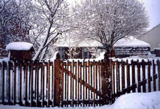 Mom's fence