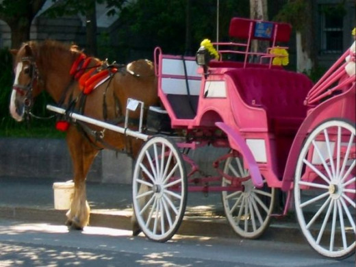 Horse drawn carriage in Old Montreal