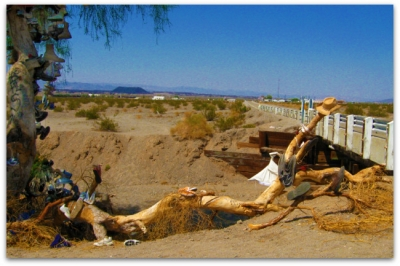 The Amboy Shoe Tree with a view of the Crater in the background