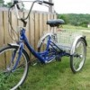 Which Is The Best Adult Tricycle Bike?