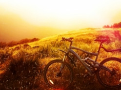Five Best Mountain Bikes for Under $500