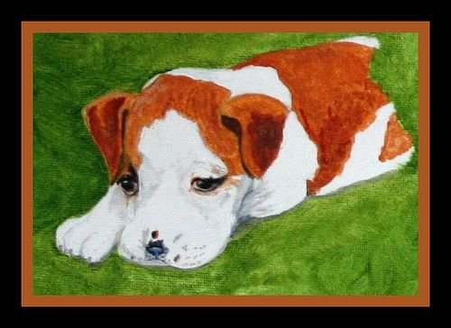 A portrait of Jersey by Linda Hoxie