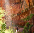 The Lower Emerald Pool Trail - at Zion National Park