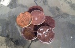 The 6 pennies Penny ate.