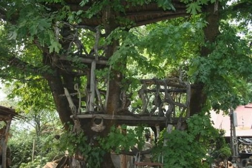 Cool Tree house photo