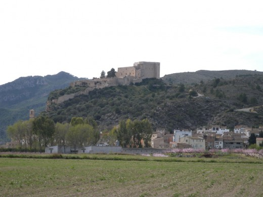 The Templar Castle and the town of Miravet.
