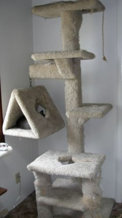 Cat Trees: The Ultimate Furniture For Pampered Cats
