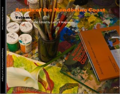 Artists of the Mendocino Coast, VOL 2