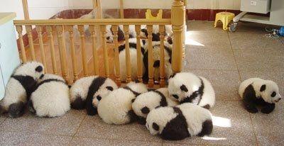 Let's just sleep here.